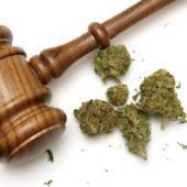 CT marijuana possession laws